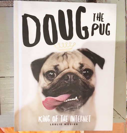 LMG1 Doug the pug book