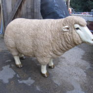 Merino Sheep Life Size LMGA21